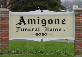 [Image: Amigone232.jpg]