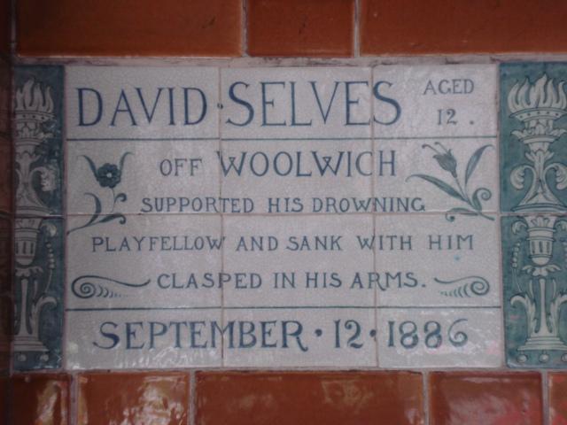 David_Selves