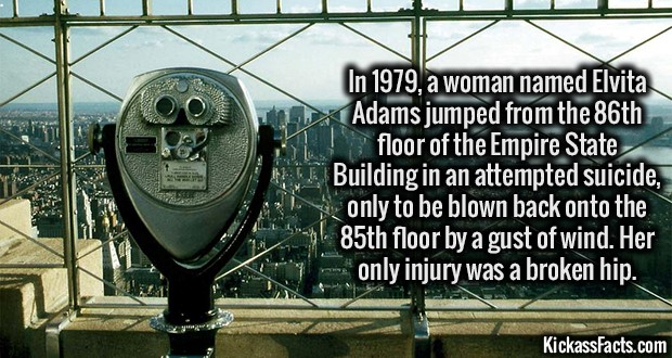 1772-Empire-State-Building-Suicide
