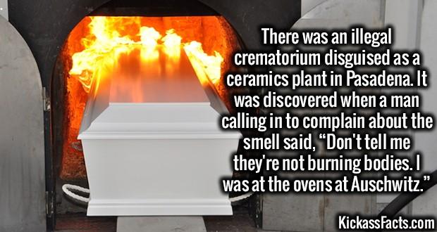 1824-Illegal-Crematorium