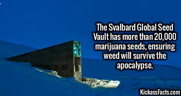 1829-Svalbard-Global-Seed-Vault